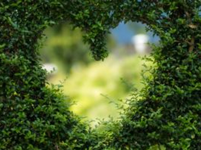 """This one-day workshop will explore ways that we can increase kindness and compassion towards ourselves – enabling us to then give to others. """"Love starts with loving oneself."""""""