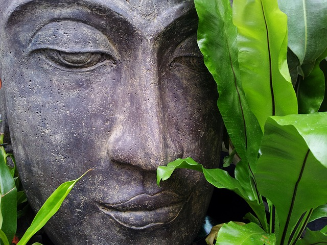 This half day workshop aims to create an understanding of mindfulness and to deliver practical tips that be used in everyday scenarios.